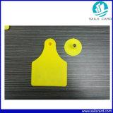Zahl gedruckte gelbe Plastikvieh-Ohr-Marken