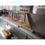 Stampatrice automatica dello schermo di Tam-Zl per la penna, candela, tubo
