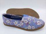Эбу системы впрыска для отдыха Canvas обувь плоские комфорт обувь для женщин (FZL822-13)