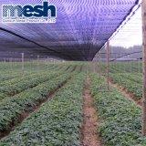Réseau d'ombre d'approvisionnement d'usine pour le jardin