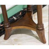 Moda Hogar muebles de madera maciza Flor Racks (como812)