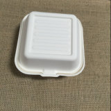 boîte biodégradable à hamburger de canne à sucre de 6inch 100%
