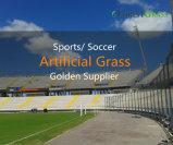 W forme 14000 Dtex Gazon artificiel de haute qualité pour les champs de football standard