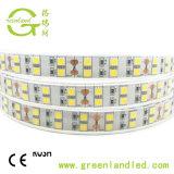 5050 double rangée de SMD Bande LED 120LED/M DC12V IP67 étanches IP67 Bande LED lumière
