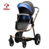 Passeggiatore del bambino con il blocco per grafici e Carrycot normale e del sede e Carseat normali