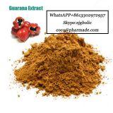 Guarana Extract Serve Guarana Body Factory Guarana Kola groove Powder