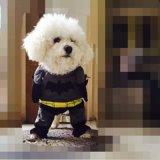 El perro de la muestra libre arropa el producto del animal doméstico de la ropa del perro del precio bajo