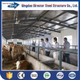 中国はアルジェリアのためのHの鋼鉄の梁の牛またはヒツジまたは馬またはブタの養鶏場の建物デザインを組立て式に作った