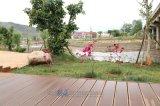 Extrusion plastique bon marché en plein air Co bois Composite Decking WPC Co-Extrude Flooring