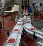 Transportband van de Riem van de Lopende band van het Varkensvlees van het Rundvlees van de Rang van het voedsel De Modulaire