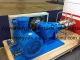 Pressão média e grande bomba de pistão do vácuo do argônio do nitrogênio do oxigênio do fluxo