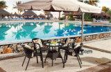 屋外の/Rattan/庭/テラス/ホテルの家具の藤の椅子の&Tableセット(HS1182C&HS6080CDT)