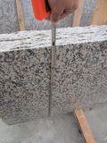 Voorzijde van de Muur van de Tegel van het Graniet van het Graniet van de Huid van de tijger de Witte