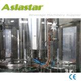 Machine de remplissage liquide automatique de l'eau de conformité de la CE