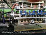 De Machine van het Afgietsel van de slag van de Fles Van uitstekende kwaliteit (huisdier-02A)