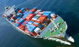 Consolidação de frete marítimo LCL Guangzhou de Charlotte, Carolina do Norte