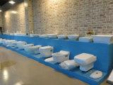 Европейский тазик запитка SD-23042 ванной комнаты типа