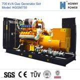 700kVA générateur de gaz avec moteur Googol 50Hz