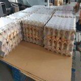 Film d'emballage de rétrécissement au lieu des cartons
