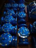 La seguridad Anti-Pollution cortó la válvula de retención con ventilación atmosférica (GHS11X)