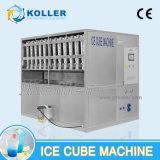 Macchina commestibile trasparente del cubo di ghiaccio di grande capienza di Koller nella zona vasta