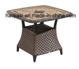 /Rattan extérieur/présidence et Tableau de rotin meubles de jardin/patio/hôtel mis (HS 1629LC et 7616DT)