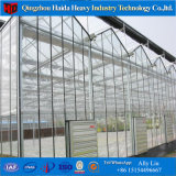 Sombra cobertura neta de gases de efecto invernadero de cristal Multispan hidropónico