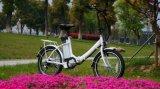 20inch che piega l'inclusione elettrica di Ebike della gomma della città della bicicletta dalla Cina