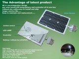 Heißes verkaufen12w alle in einem Solar-LED-Straßenlaternemit Fühler