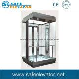 Vvvf lamelliertes Glas-besichtigenbeobachtungs-anhebende Maschine
