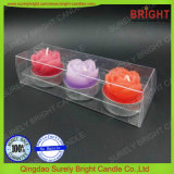 Velas Candelitas y Pilar Candle Set