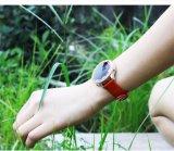 H6 Armband van de Band van het Horloge van de Diamant de Slimme Slimme Waterdichte IP67 voor Androïde Ios