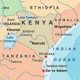Overzeese Vracht van Tianjin/Shenzhen aan Djibouti/Mombasa/Dar-es-saalam/Maputo
