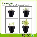 3 LED 3W de la luz de la planta de Clip con Goose-Neck 360 grados para las plantas de interior hidropónicos de efecto invernadero de jardinería
