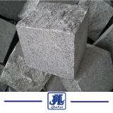 회색 화강암 G654 조약돌, 은 회색 포장 기계, 밝은 회색 화강암에 의하여 타오르는 포석, 참깨 회색 포장 기계 & 도와 의 참깨 회색 떨어지게 한 포석