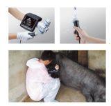 Meilleur Prix scanner à ultrasons à usage vétérinaire, test de grossesse, la reproduction à usage vétérinaire Balayage aux ultrasons, Portable Vet Prix d'échographie, l'échographie diagnostique