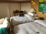 Tende affidabili della cabina di famiglia per il campeggio