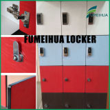 Custom Aluminium Profile HPL Locker for Supermarket