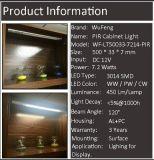 Licht van LEIDEN /Showcase van de Vertoning het Lichte met de Sensor van de Motie