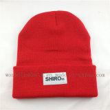 Chapeau tricoté chaud de modèle de lettres de mode avec l'étiquette tissée