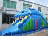 Trasparenza gonfiabile dello squalo di migliore vendita/trasparenza gonfiabile gigante da vendere
