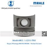 Motor Isuzu 6bg1 1-12111781-0 Pistão em Mahle Brand