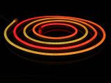 Indicatore luminoso flessibile al neon DC24V di Digitahi LED con l'alta qualità