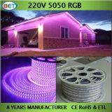 110V 220V RGB LEIDENE 60LED Lichte Vermelde Kabel ETL van de Strook