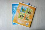 Het Leren van de Student van het Oefenboek van de School van de levering Notitieboekje