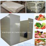 Camminata della cella frigorifera dell'OEM di Caldo-Vendita in congelatore per carne e la verdura