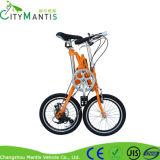 Bicicleta de dobramento de dobramento do aço de carbono da bicicleta