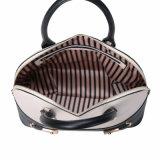 쉘 모양 (MBNO041072)에 있는 형식 여자 핸드백