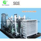 Высокий компрессор природного газа давления для станции мати CNG