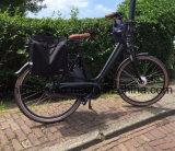 Голландская повелительница Тип 500With250With350W &#160 сбор винограда; Электрический велосипед/электрический велосипед/шаг Bike Bike/E/Pedelec/E через велосипед e с 700c автошиной, En15194